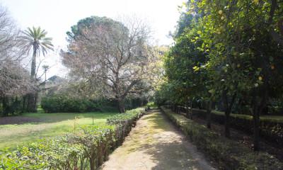 Invitando al paseo y la reflexión